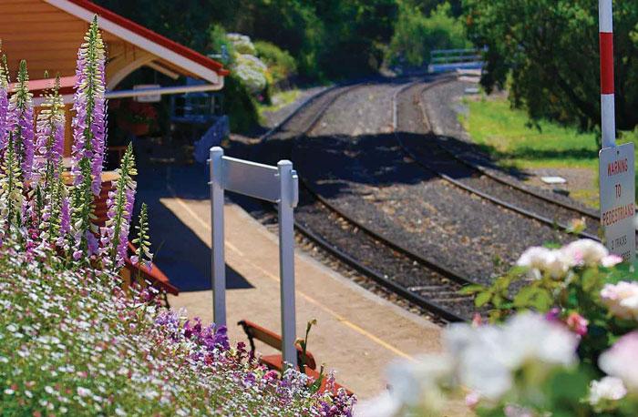 Diesel-hauled train rides to Spring Bluff