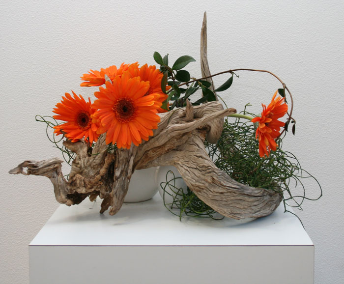 Ikebana Display