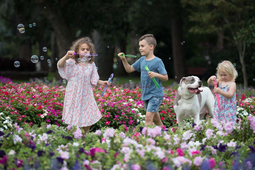 Petals & Pups Itineraries